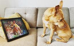 A dog and his custom dog portrait