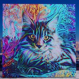 colorful cat portrait