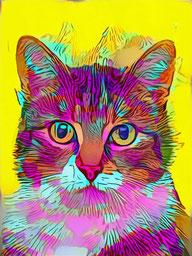 pop art pet portrait