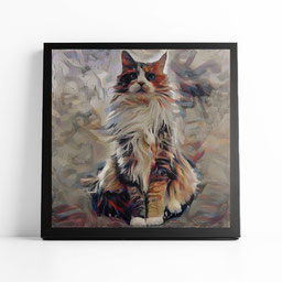 Pet portrait of a Maine Coon