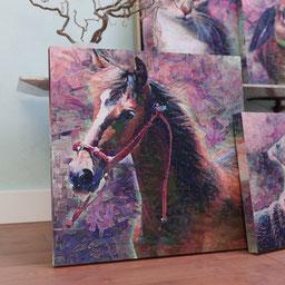 Pink horse portrait