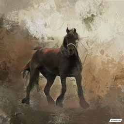 Wall Art of a horse portraits Painting